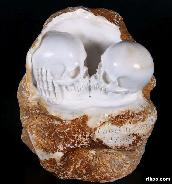 "LOVE NEVER DIES 5.5"" White Chalcedony Carved Crystal Skull"