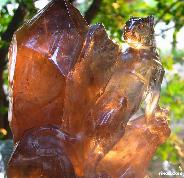 STUNNING Smokey/Smoky/Smokey Quartz Rock Crystal Carved Tiger