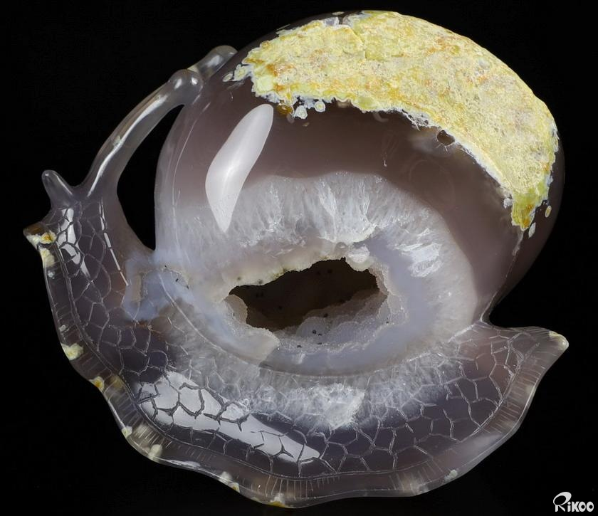Agate Geode Crystal Snail